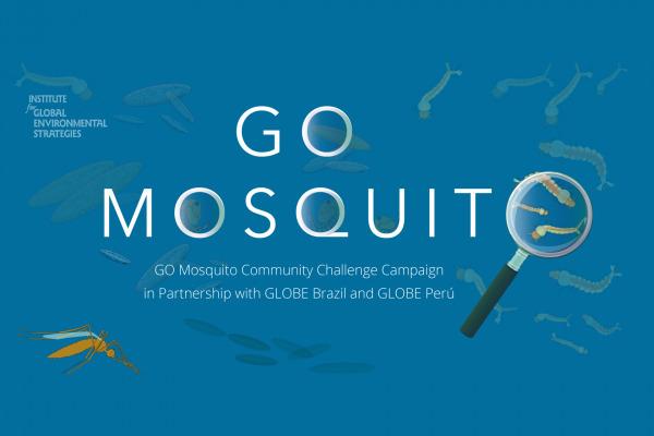 GO Mosquito Campaign