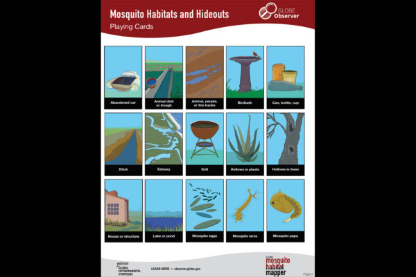 Mosquito Habitats and Hideouts